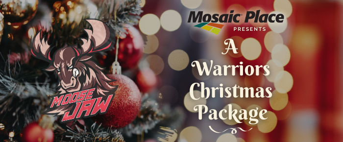 Warriors_Christmas_package_WebBanner_700_x_290_px